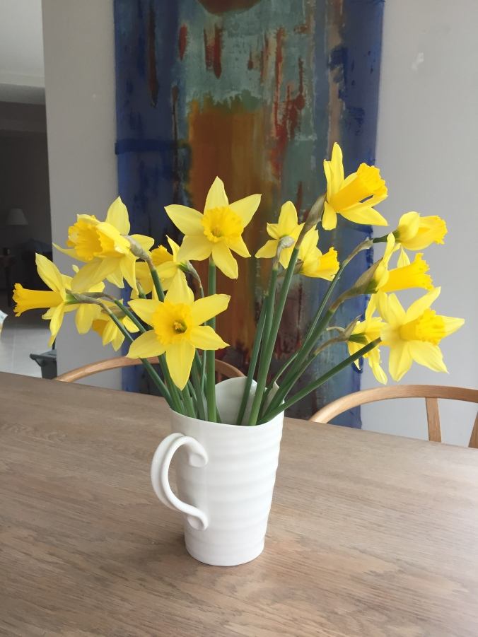 First Daffodils of 2018