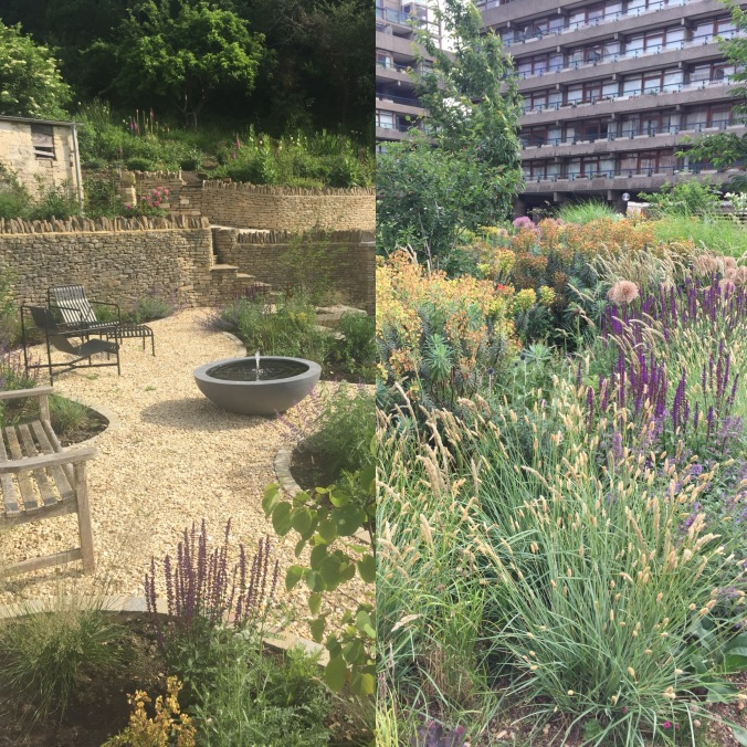 Our New Garden and The Barbican Gardens