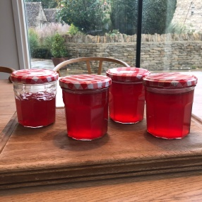 Hand Crafted (By Me) Crab Apple Jelly