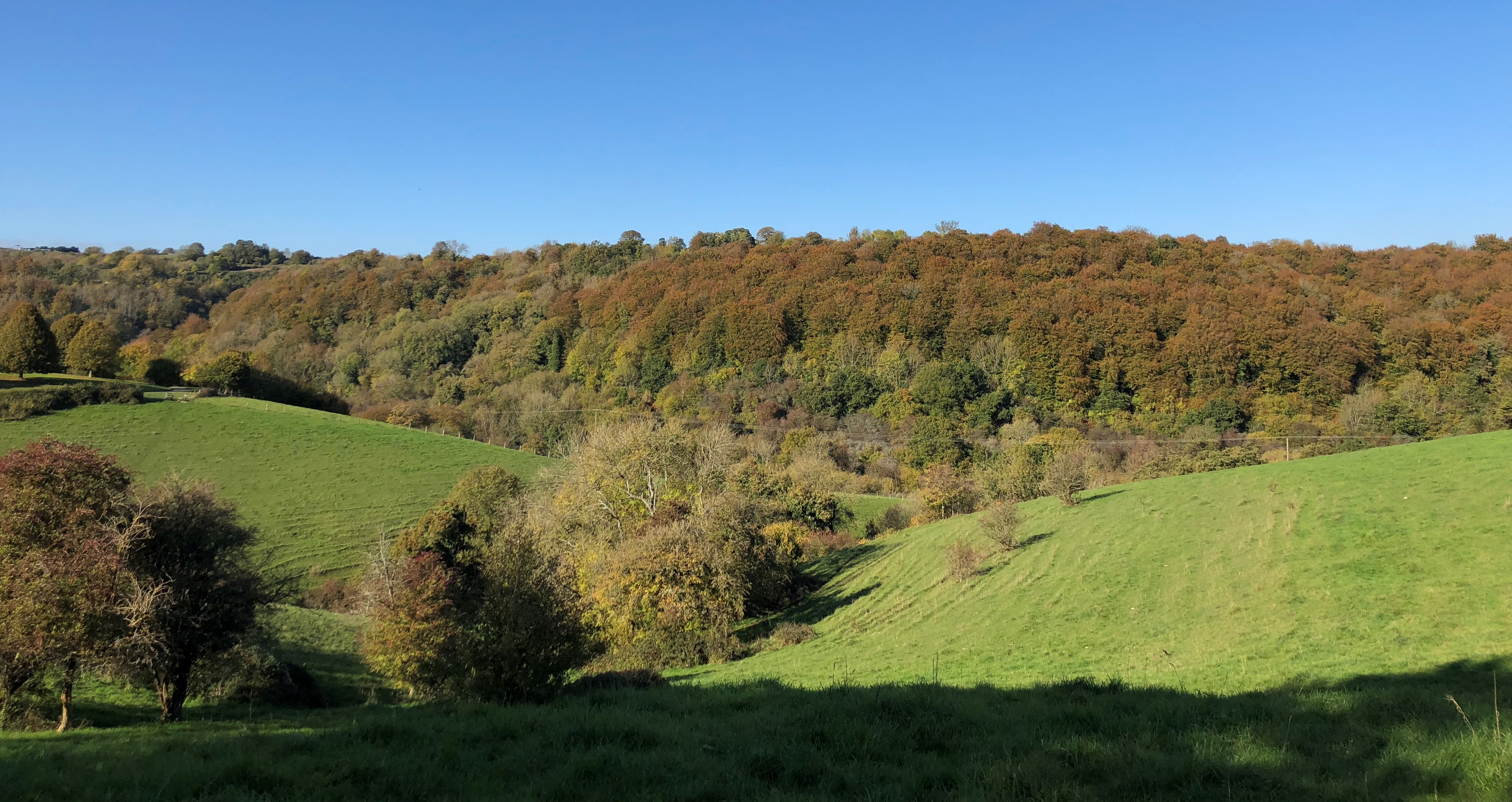 Wonderful Mid Autumn Day