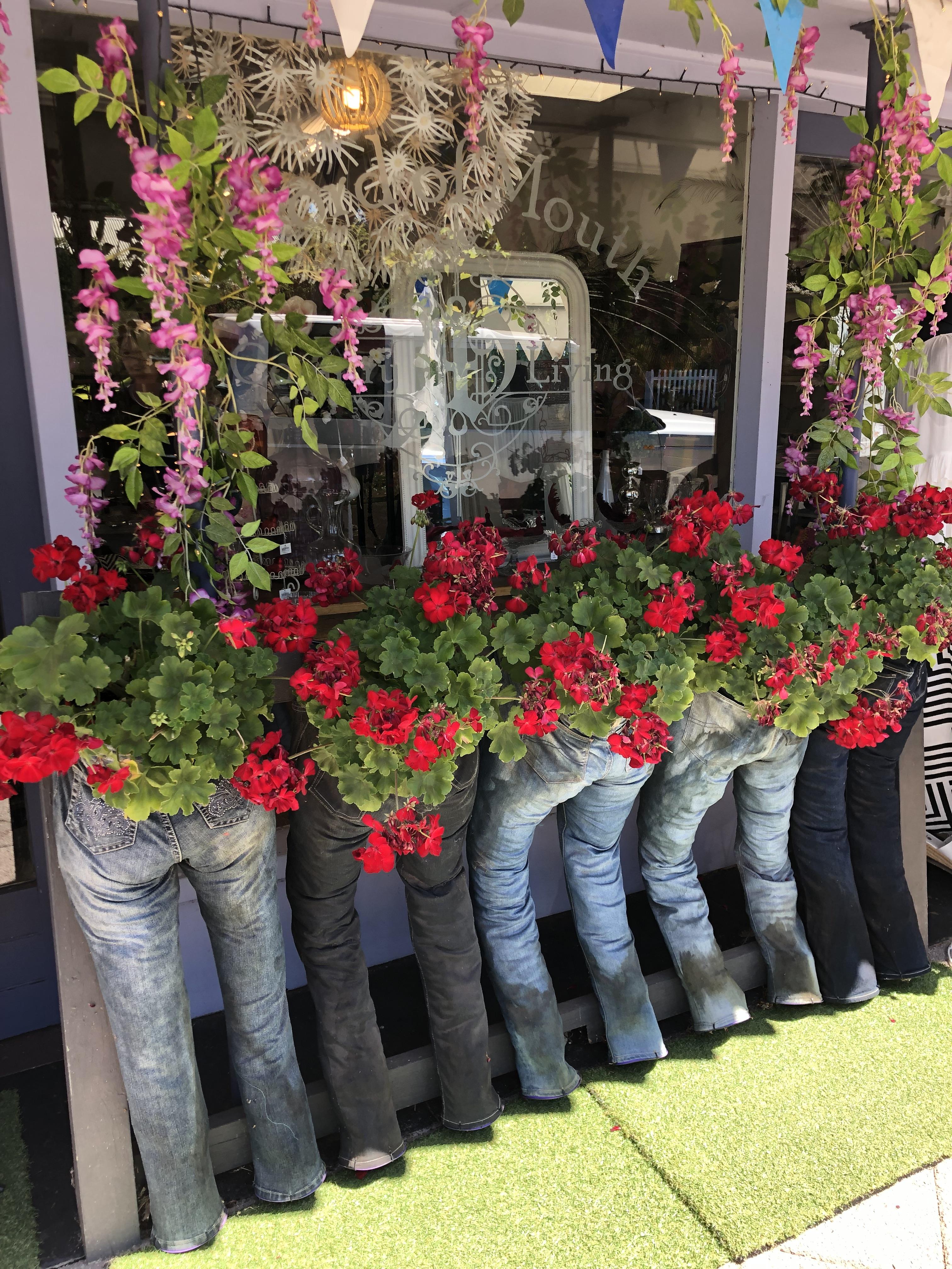 Unusual Floral Display In Nannup :)