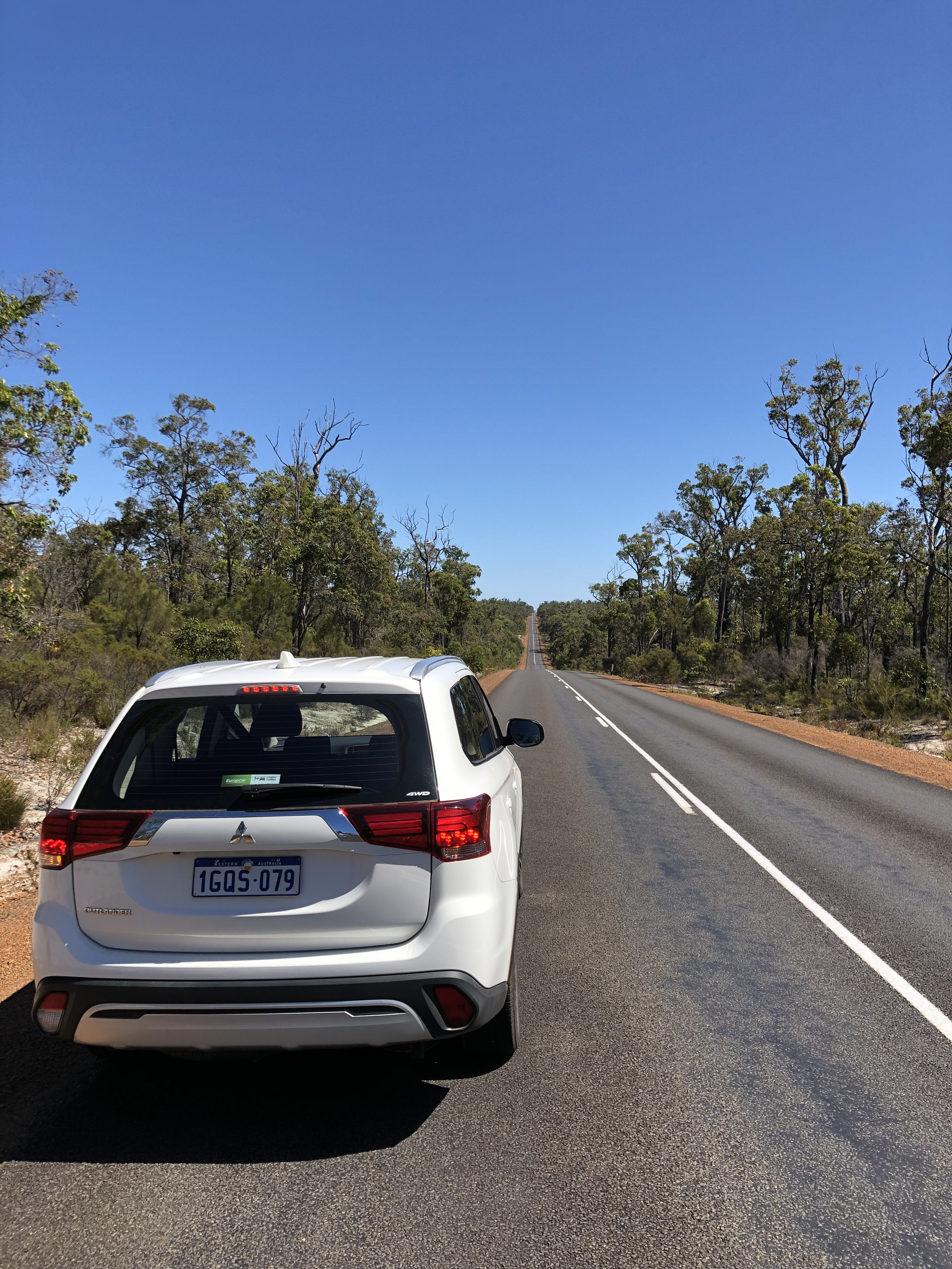 Straight Roads And Huge Eucalyptus Forests