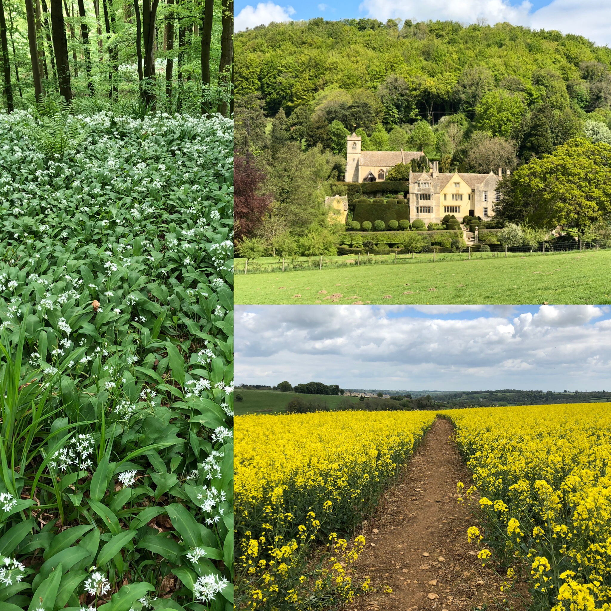 Birthday Walk West Of Horsley, Gloucestershire To Owlpen And Back
