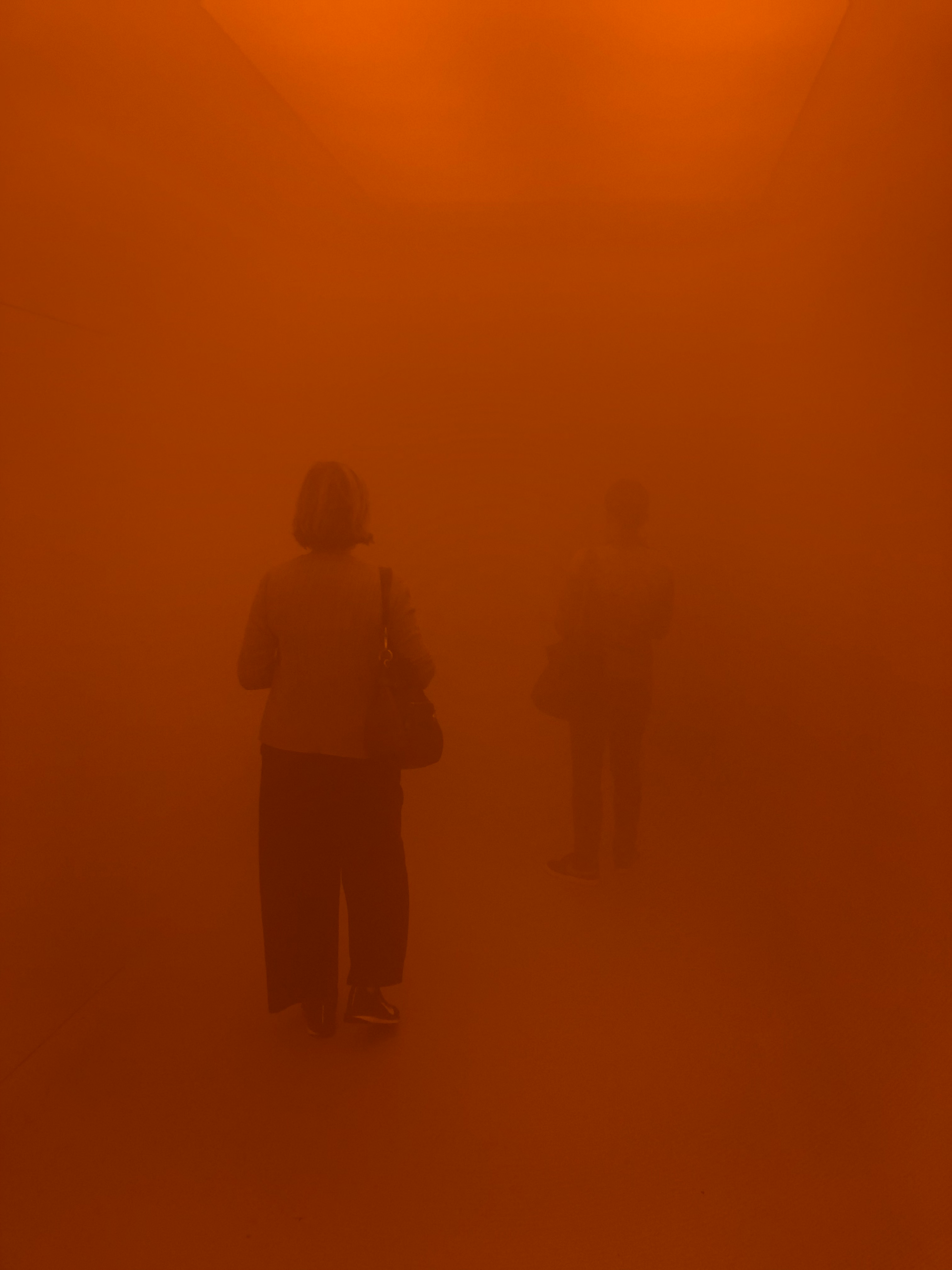 Your Blind Passenger By Olafur Eliasson (2010)