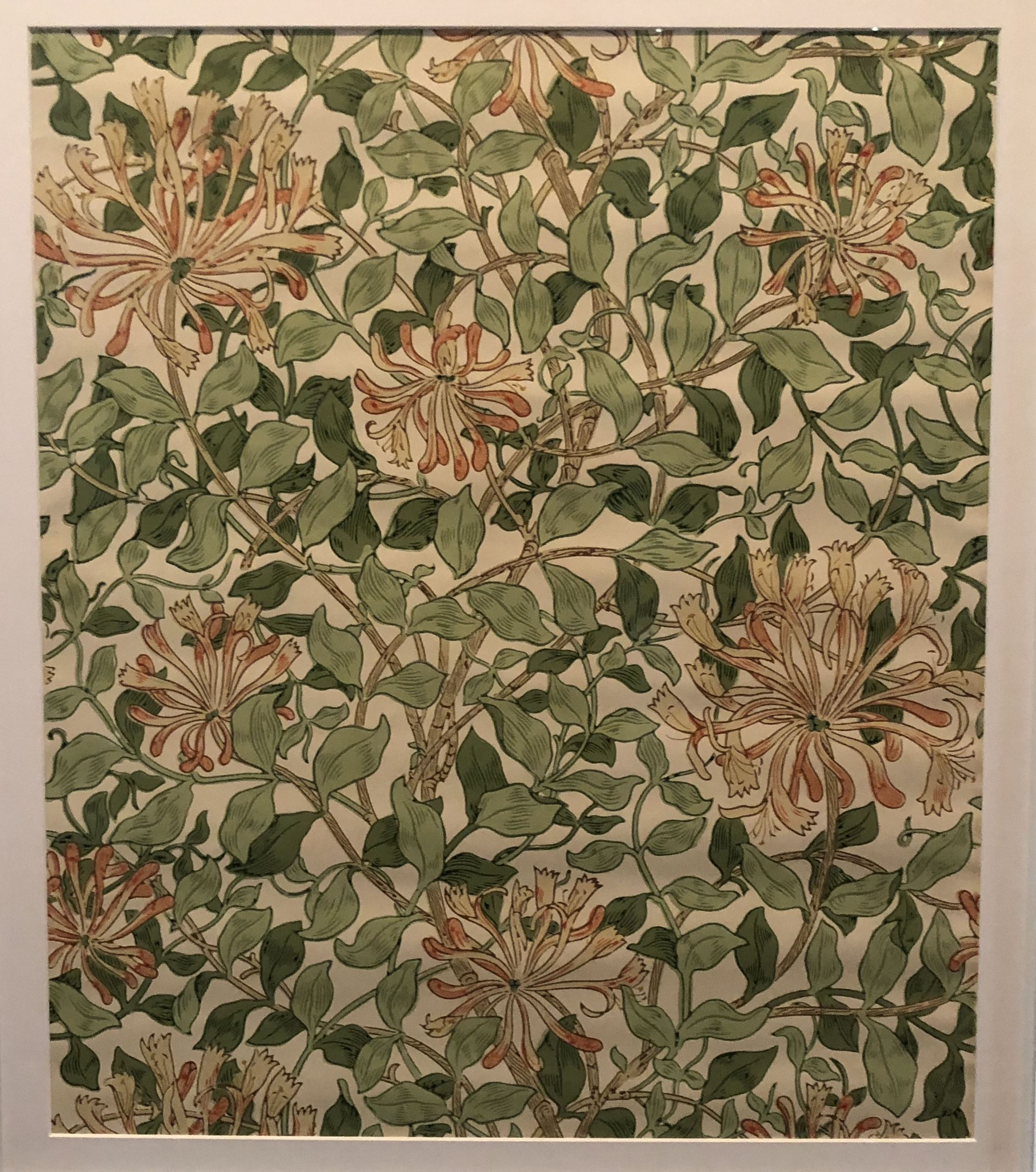 Honeysuckle Print Wallpaper - Typical William Morris