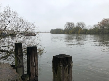 The Thames Art Chiswick