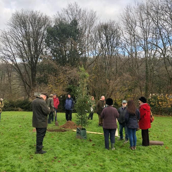 Tree Planting In Nailsworth