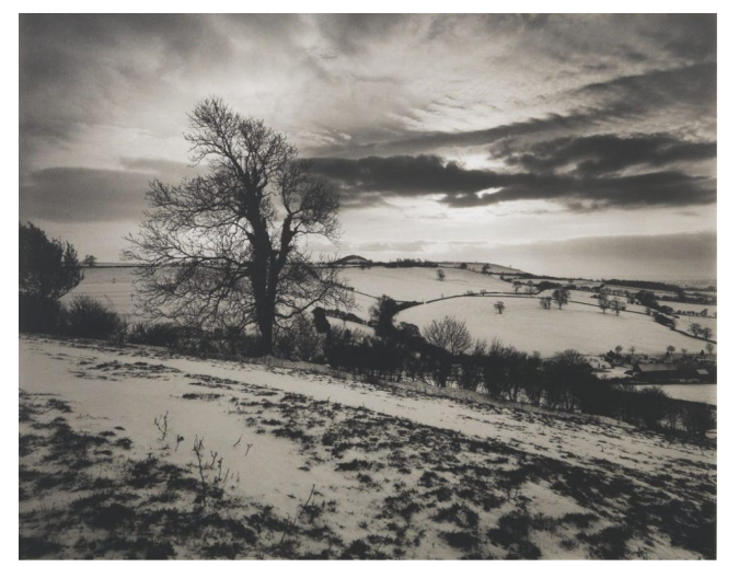 'Batcombe Vale' By Don McCullin
