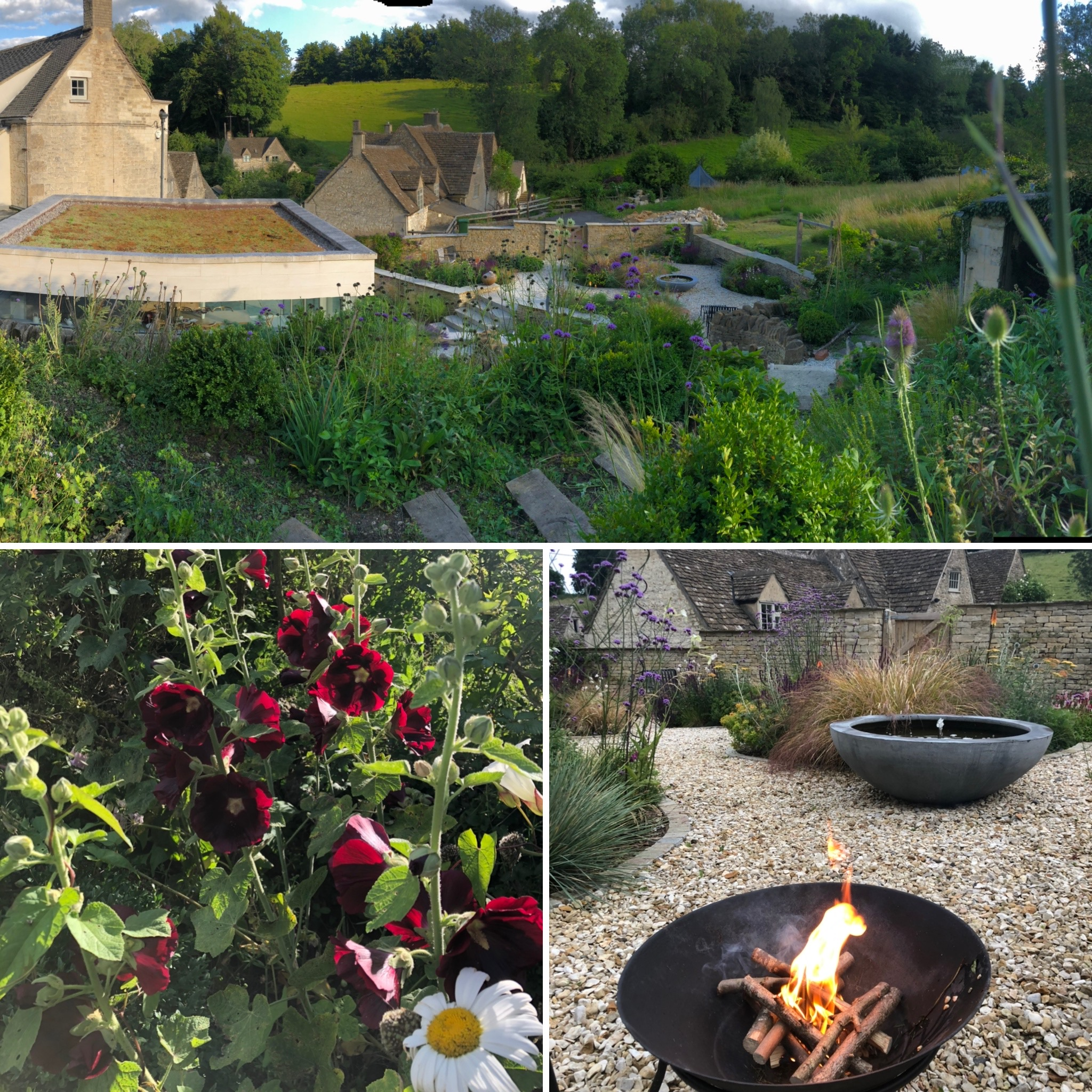 Garden Views: Panorama From Our New Gate, Hollyhocks and First Use Of The New Fire Pit